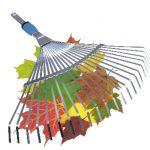 грабли для сбора листьев
