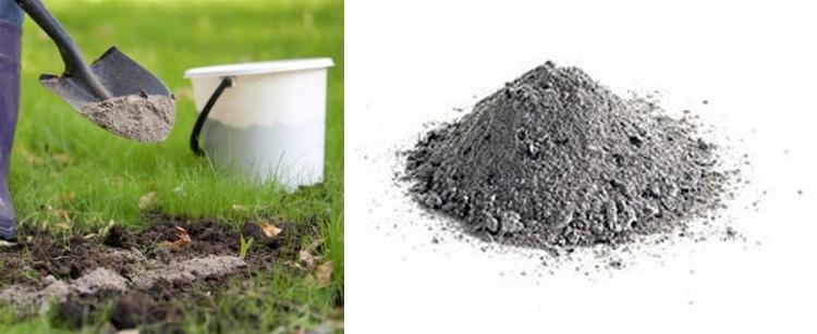 использование золы как удобрения для сада и огорода