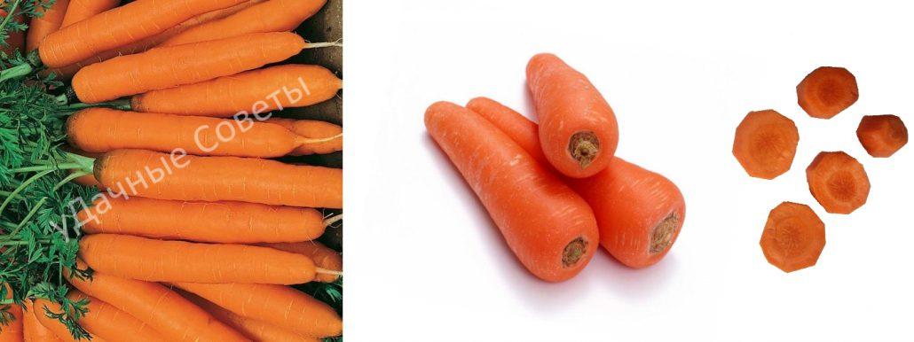 сладкая морковь карамелька, фото, описание