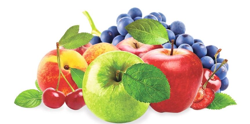 сажаем плодово-ягодные культуры