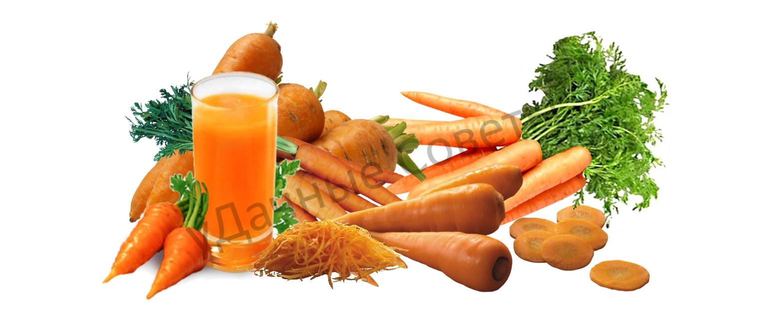 виды сладкой моркови, описание, фото